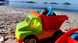 I camion vanno al mare! - Video divertenti per bambini
