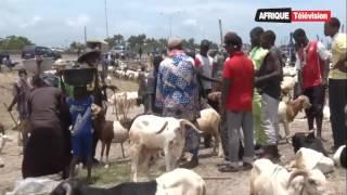 BENIN:/NIGERIA : préparatifs de la Tabaski sur fond de crise économique