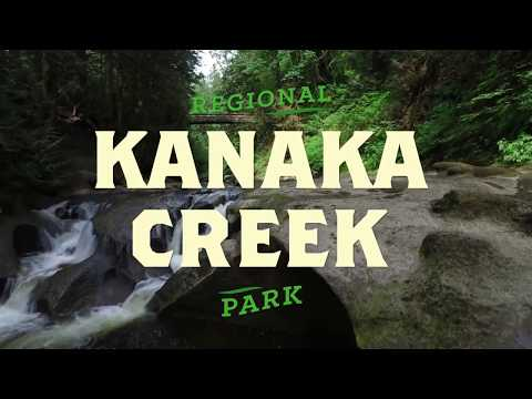 Kanaka Creek Regional Park Profile 2017