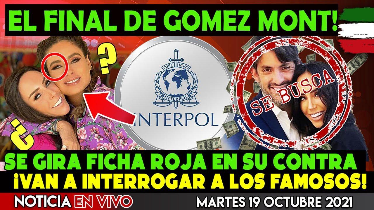 ¡ACABA DE PASAR! EL FINAL DE INES GOMEZ MONT ¡SE GIRA FICHA ROJA PARA SU CAPTURA INTERNACIONAL!