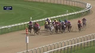 Vidéo de la course PMU GRAND HANDICAP DES COLLECTIVITES LOCALES