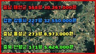 경매물건:단양군 171평 5,424,000/ [낙찰]홍…