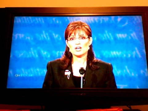 Sarah Palin Has Sex 73