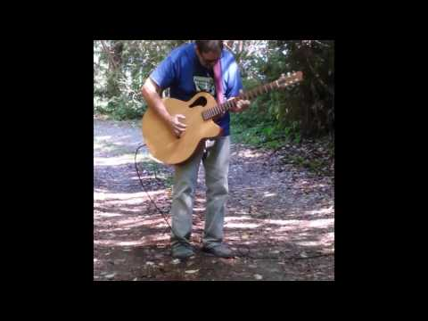 Intertidal Zone played on Tacoma Thunderhawk Baritone Guitar