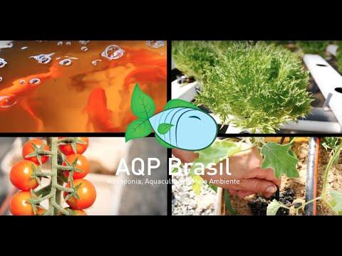 AQP Brasil - Aquaponia