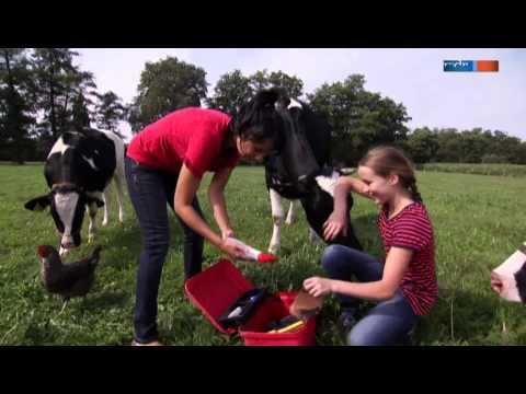Kann man auf einer Kuh reiten?   Aussenseiter Spitzenreiter  MDR