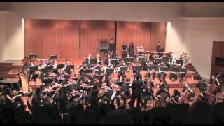 Monash Medical Orchestra 2013 - Swan Lake Suite, No. 1 Scene Moderato  (Tchaikovsky)