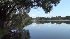 11518 Forest Hills Tampa Waterfront Lake Eckles