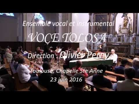 Voce Tolosa.  A. Vivaldi : Allegro du concerto pour cordes RV 153.
