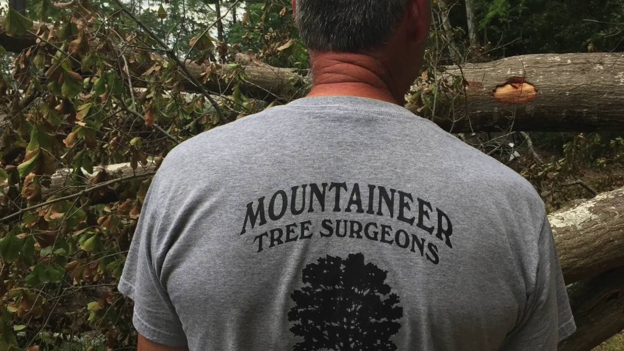 Mountaineer Tree Surgeons Hype Video 2016