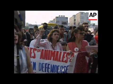 MEXICO: ANIMAL RIGHTS ACTIVISTS PROTEST AGAINST BULLFIGHTING