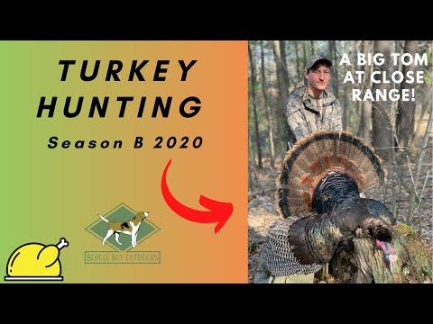 Turkey Hunting Season B 2020 | A Big Wisconsin Tom At Close Range |