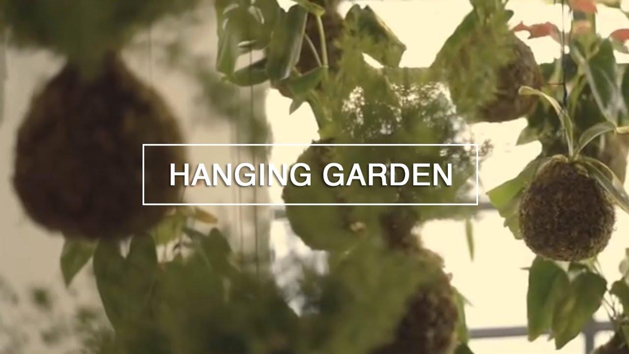 DIY Hanging String Garden   Green Renaissance   YouTube
