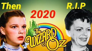 Actors Who Should Be In Wizard Of Oz Remake
