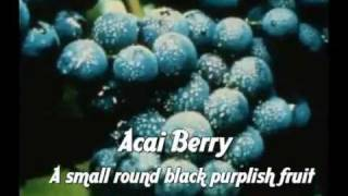 Acai and Weight Loss Benefits