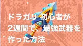 【ドラガリ8】初心者が2週間で最強武器を作る方法 ドラガリアロストのサムネイル