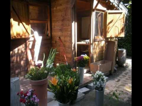Centro de jardiner a y arte floral en madrid malpica for Centros de jardineria en madrid