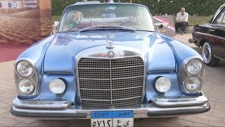 Vintage Mercedes autos shine at Cairo's classic car show