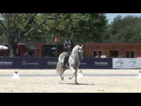 Pedro Torres  - Working Equitation