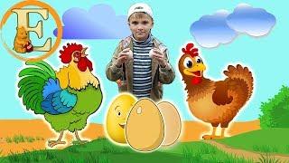 Откуда берутся яйца? Развивающие видео про животных для детей