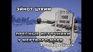 Заповедник Эйнот Цуким (Эйн Фашха), Мертвое море