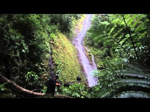 Manoa Falls, Kahuwaiki Falls, and Naniuapo Falls