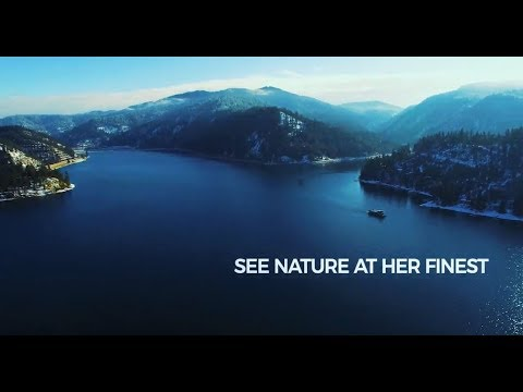 Experience Nature at It's Finest: Lake Coeur d'Alene Eagle Watching Cruises