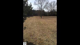 Lots And Land for sale - TBD N Arrowhead Drive, Weidman, MI 48893