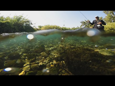דייג-פורלים-בנחל-|-trout-fishing-in-israel-c&r-|-erez-cohen-fishing-videos-|-פורלים-בנחל
