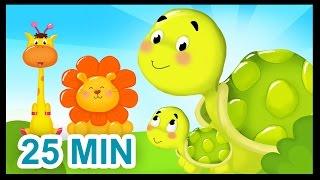 La famille Tortue - 25 min - Comptines sur les animaux pour les bébés