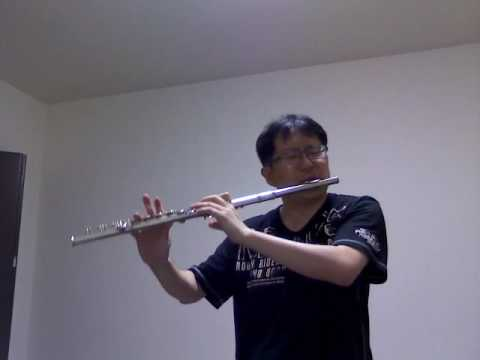 crystallize---lindsey-stirling-(-non-step-flute-cover)