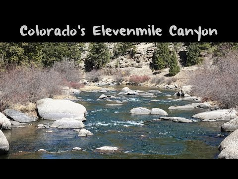 Trout Fishing Colorado's Eleven Mile Canyon