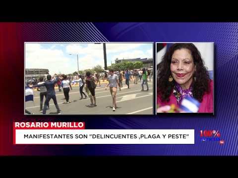 """Murillo a manifestantes: """"Son delincuentes, plagas y peste"""""""