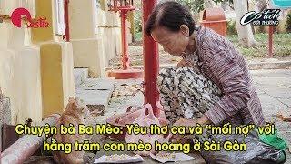 """Chuyện bà Ba Mèo: Yêu thơ ca và """"mối nợ"""" với hàng trăm con mèo hoang ở Sài Gòn"""