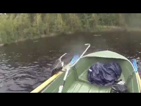 Щука утопила лодку! Супер рыбалка!