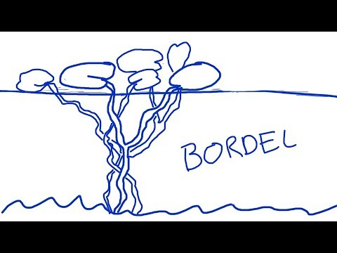 Borderline questions avancées Partie 1 - PsykoCouac #1.3