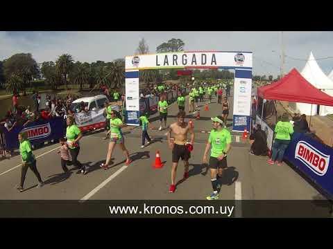 BIMBO Global Energy Race - 10K (2017)