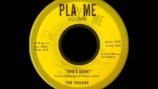 The Oceans - She's Gone (1966)