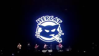 Hepcat - non stop ska 2018