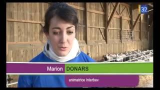 Comment marche la traite des vaches ?