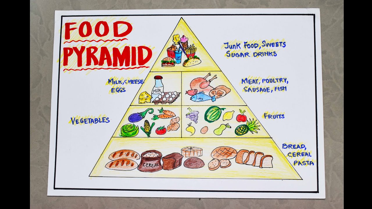 Healthy Food Pyramid Drawing For Kids Science School Project Art Chart Poster Easy Steps 14 Youtube