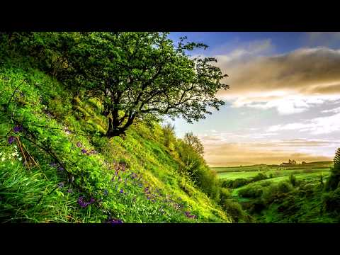 antonio-vivaldi---seasons-(summer)