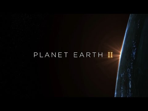 Planet Earth II Hans Zimmer Soundtrack 360° - BBC Earth