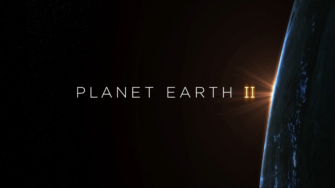 Planet Earth II - I Have no TV