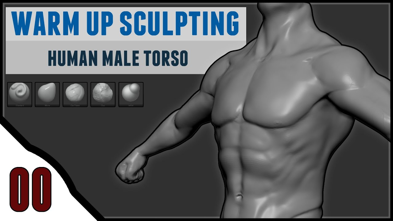 Human Male Torso Warm Up Sculpting 00 Zbrush Youtube