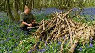 Ray Mears - How to bake bread in the outdoors, Wild Food thumbnail