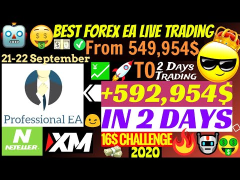 Trading forex with ea italy