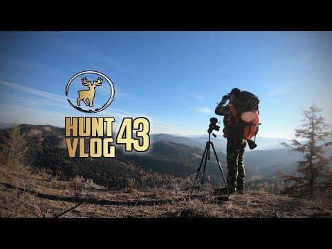 Washington State Rifle Mule Deer Hunt ‒ SECOND Weekend & Special Permit Doe Hunt | Hunt Vlog #43