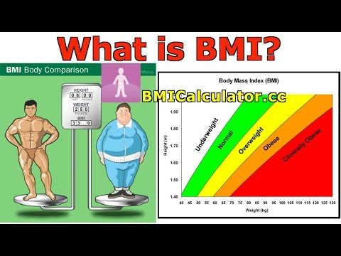 Bmi Calculator How To | Online Help How To
