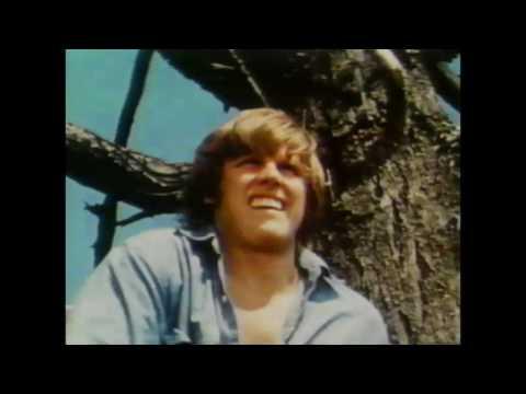 Didn't You Hear (1983) Movie Trailer - Rare Gary Busey!
